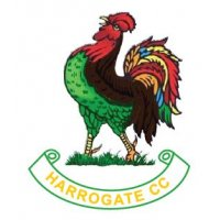 Harrogate CC Core Range Junior